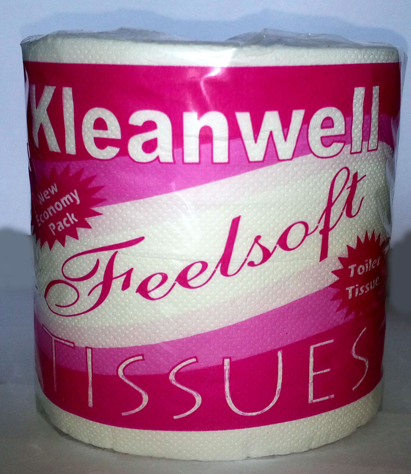 bathroom-cleaning Kleanwell care
